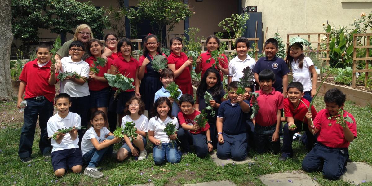 100 Gardens In Los Angeles The Edible Schoolyard Project
